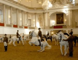 מופע סוסים וינה